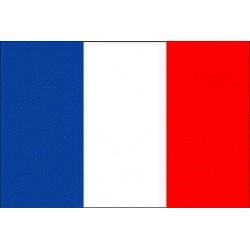 WW1 - WW2 - Drapeau Français