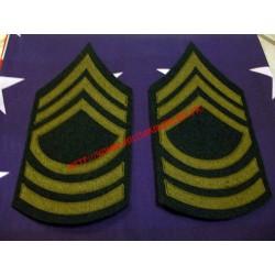 WW2 - Grade de Master Sergeant