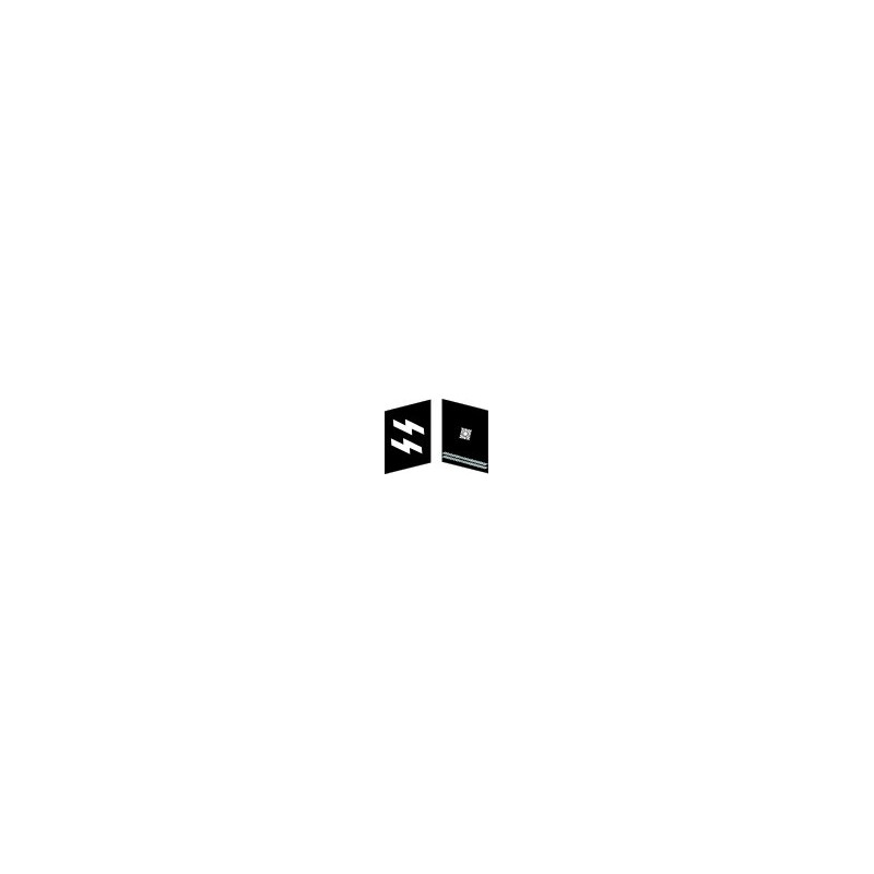 GER - insigne de col - Obersharfürher- WX
